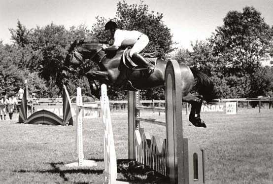 eric loubet  horses training  jumping  dressage  training