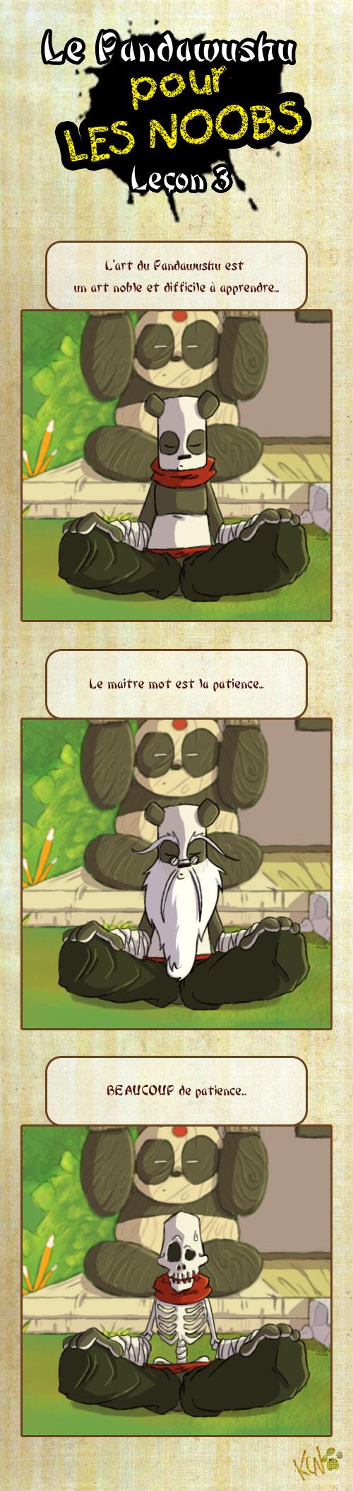 Le Pandawushu pour les Noobs Pandawushu03