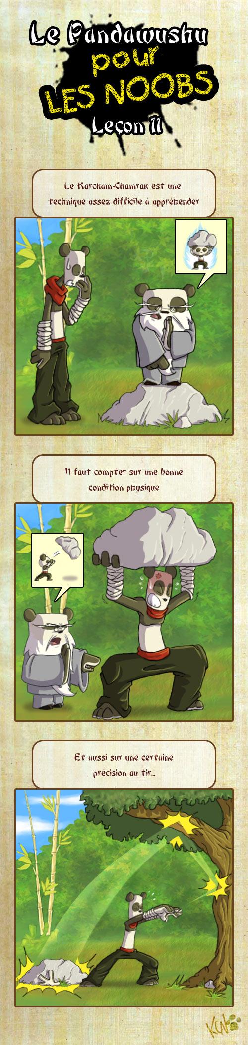 Le Pandawushu pour les Noobs Pandawushu11