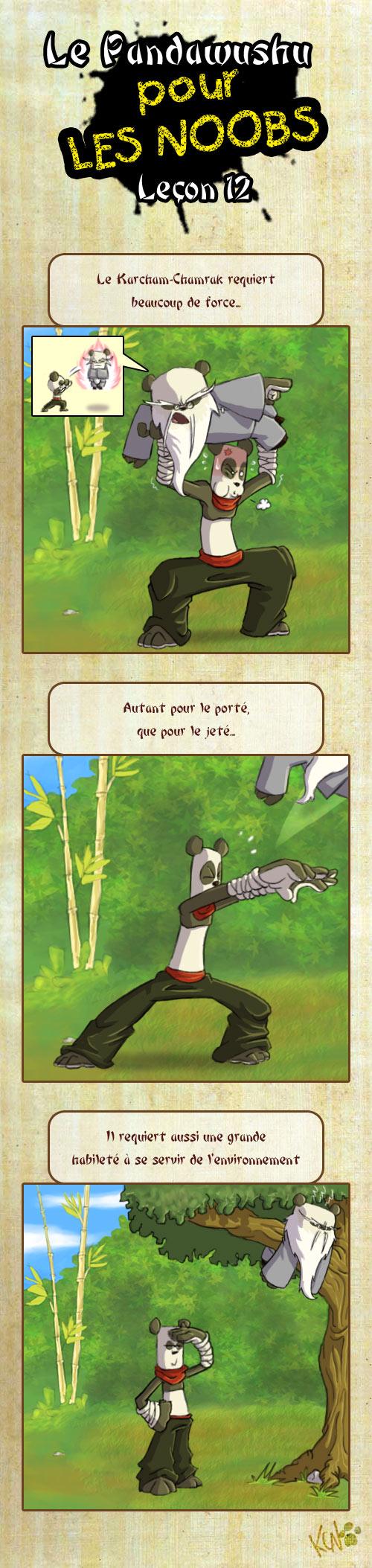 Le Pandawushu pour les Noobs Pandawushu12