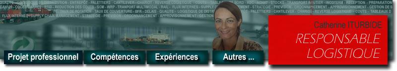 cv responsable  ou assistante  logistique et supply chain