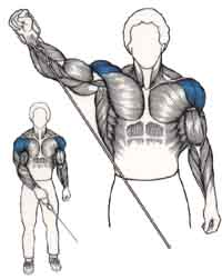 banc guide musculation